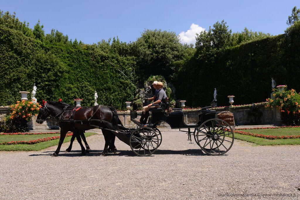 domeniche di luglio in carrozza a Villa Reale di Marlia