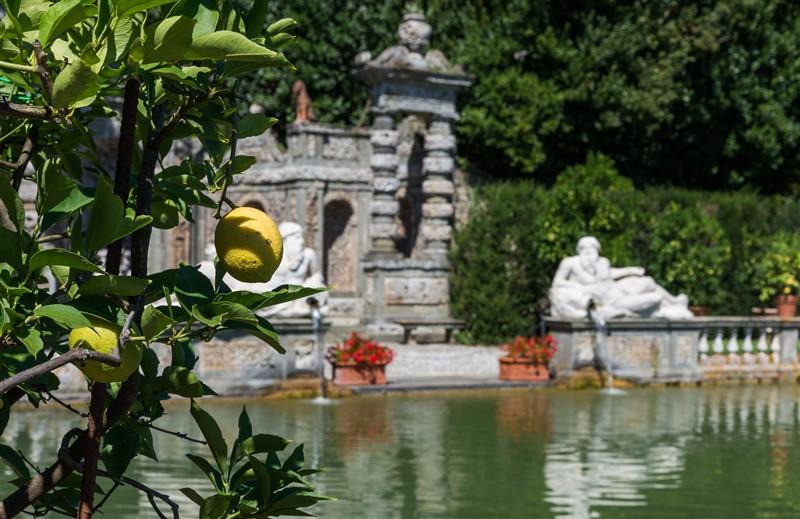 veduta giardino dei limoni villa reale