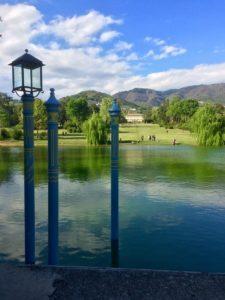 Caccia al tesoro botanico_Villa Reale di Marlia (3)