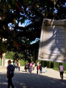 Caccia al tesoro botanico_Villa Reale di Marlia