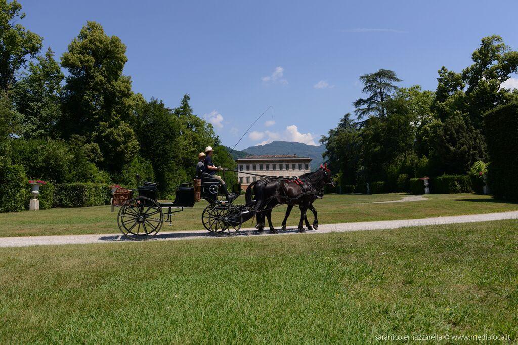 in carrozza a Villa Reale