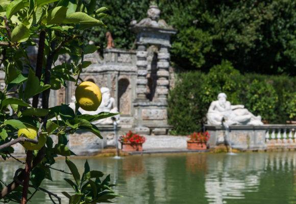 Giardino dei Limoni, sullo sfondo statua del fiume Arno - pgmedia.it