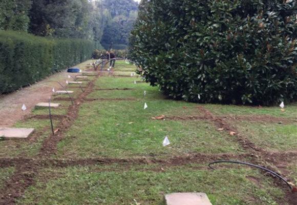 alberi siepi e piazzole - restauro Villa Reale di Marlia