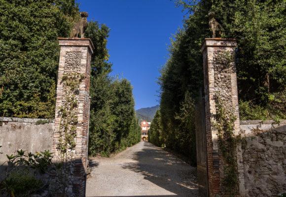 Viale che conduce alla Palazzina dell'Orologio - Foto di Vincenzo Tambasco