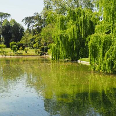 Lago di Villa Reale di Marlia