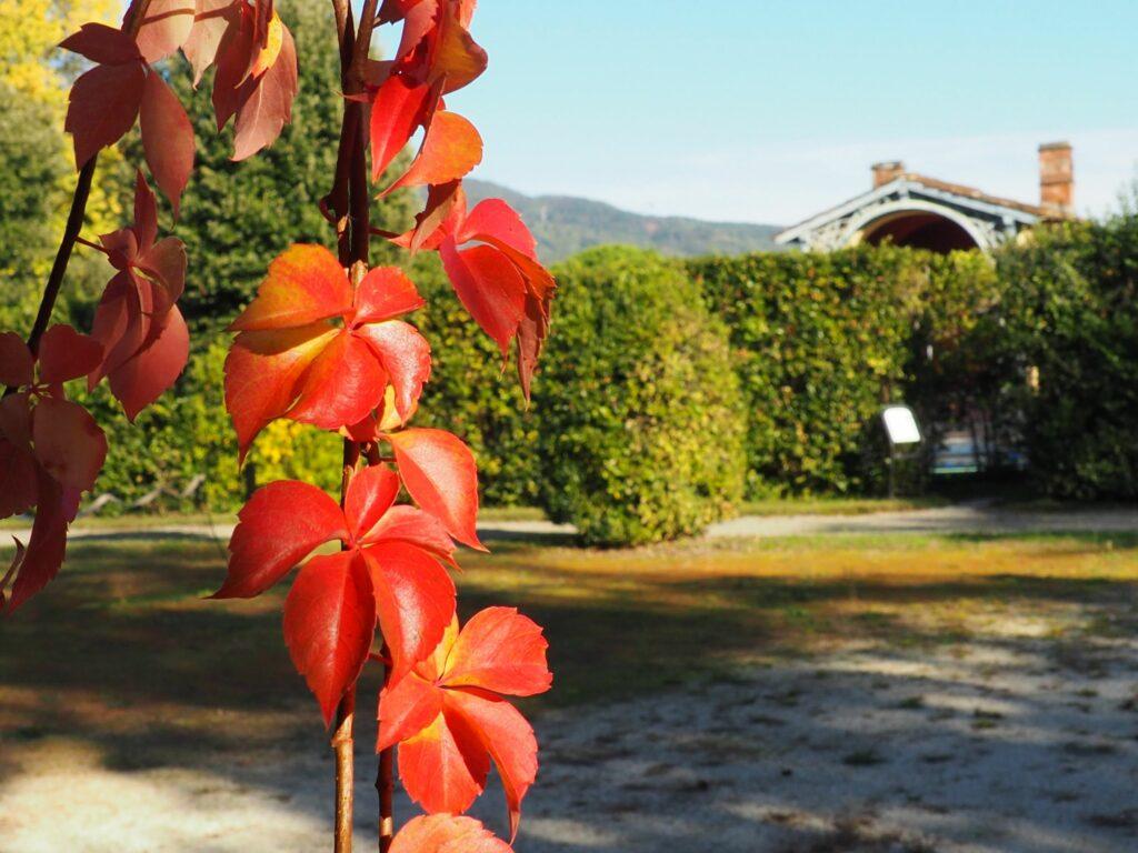 Autunno in Toscana: Villa Reale di Marlia